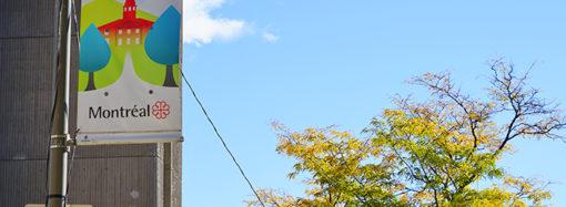 Présentation annuelle post-CaRMS : le GIMF McGill prépare ses membres pour la résidence